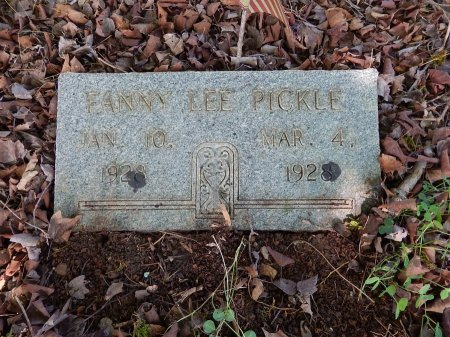 PICKLE, FANNY LEE - Campbell County, Tennessee | FANNY LEE PICKLE - Tennessee Gravestone Photos