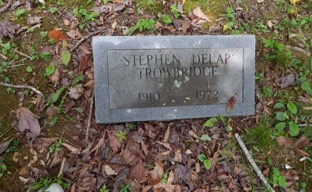 TROWBRIDGE, STEPHEN DELAP - Campbell County, Tennessee | STEPHEN DELAP TROWBRIDGE - Tennessee Gravestone Photos