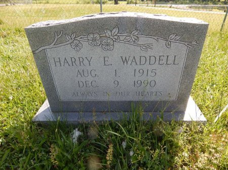 WADDELL, HARRY E - Campbell County, Tennessee | HARRY E WADDELL - Tennessee Gravestone Photos