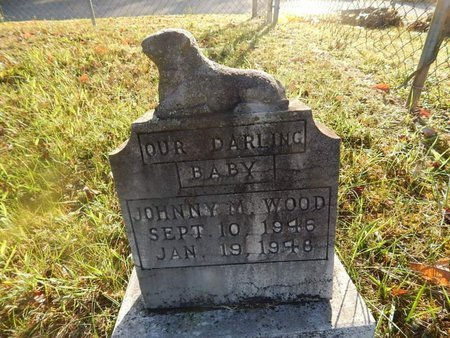 WOOD, JOHNNY M - Campbell County, Tennessee | JOHNNY M WOOD - Tennessee Gravestone Photos
