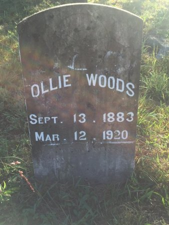 WOODS, OLLIE - Campbell County, Tennessee | OLLIE WOODS - Tennessee Gravestone Photos