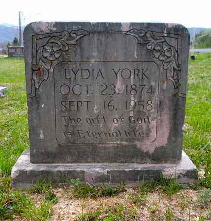 CHADWELL YORK, LYDIA - Campbell County, Tennessee | LYDIA CHADWELL YORK - Tennessee Gravestone Photos