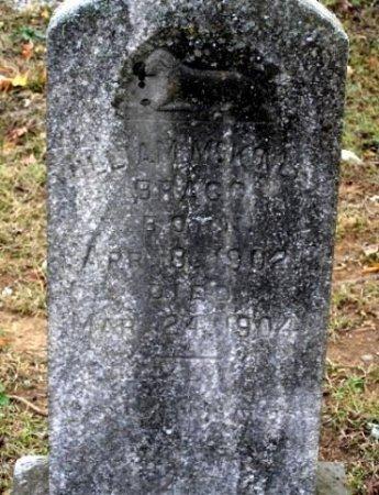 BRAGG, WILLIAM MCKINLEY - Cannon County, Tennessee | WILLIAM MCKINLEY BRAGG - Tennessee Gravestone Photos