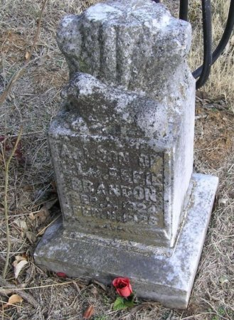 BRANDON, A. L. - Cannon County, Tennessee | A. L. BRANDON - Tennessee Gravestone Photos