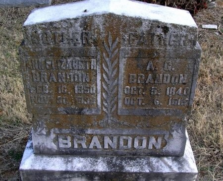 BRANDON, ALFORD GEORGE - Cannon County, Tennessee | ALFORD GEORGE BRANDON - Tennessee Gravestone Photos