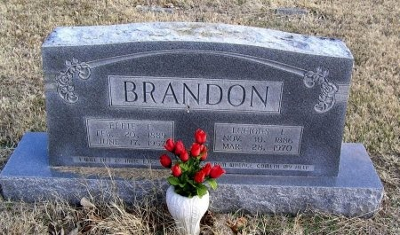 BRANDON, LUCIOUS LAMAR - Cannon County, Tennessee | LUCIOUS LAMAR BRANDON - Tennessee Gravestone Photos