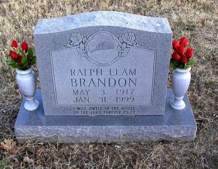 BRANDON, RALPH ELAM - Cannon County, Tennessee | RALPH ELAM BRANDON - Tennessee Gravestone Photos