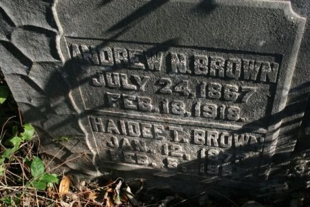 BROWN, HAIDEE T. - Cannon County, Tennessee | HAIDEE T. BROWN - Tennessee Gravestone Photos