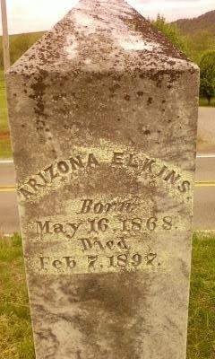 ELKINS, ARIZONA - Cannon County, Tennessee | ARIZONA ELKINS - Tennessee Gravestone Photos