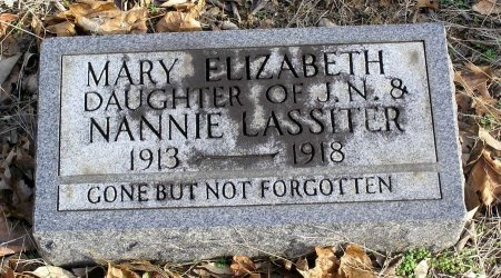 LASSITER, MARY ELIZABETH - Cannon County, Tennessee | MARY ELIZABETH LASSITER - Tennessee Gravestone Photos