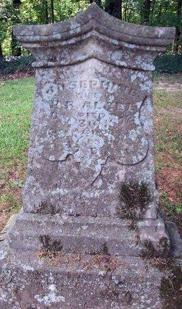 ANDERSON ALGEE, JOSEPHINE - Carroll County, Tennessee   JOSEPHINE ANDERSON ALGEE - Tennessee Gravestone Photos