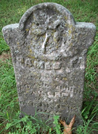 ALGEE, JAMES F. - Carroll County, Tennessee | JAMES F. ALGEE - Tennessee Gravestone Photos