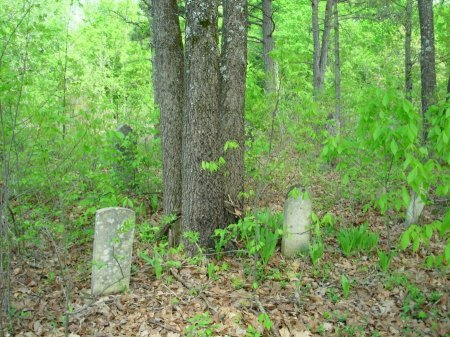 *CEMETERY VIEW,  - Carroll County, Tennessee |  *CEMETERY VIEW - Tennessee Gravestone Photos
