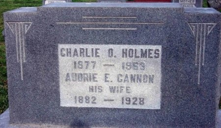 HOLMES, AUDRIE E. - Carroll County, Tennessee | AUDRIE E. HOLMES - Tennessee Gravestone Photos