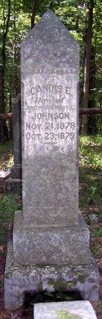 JOHNSON, CANDIS E. - Carroll County, Tennessee | CANDIS E. JOHNSON - Tennessee Gravestone Photos