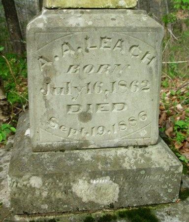 LEACH, ALPHIA A. (CLOSE UP) - Carroll County, Tennessee   ALPHIA A. (CLOSE UP) LEACH - Tennessee Gravestone Photos