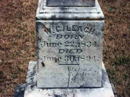 LEACH, WILLIAM GAINES (CLOSE UP) - Carroll County, Tennessee | WILLIAM GAINES (CLOSE UP) LEACH - Tennessee Gravestone Photos