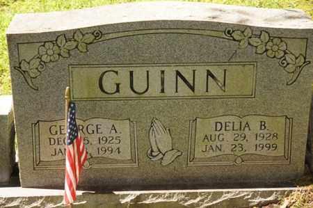 GUINN, DELIA B. - Carter County, Tennessee | DELIA B. GUINN - Tennessee Gravestone Photos