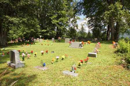 *LARGENT OVERVIEW,  - Carter County, Tennessee |  *LARGENT OVERVIEW - Tennessee Gravestone Photos