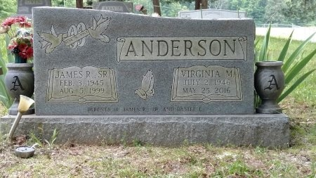 ANDERSON, VIRGINIA M. - Cheatham County, Tennessee | VIRGINIA M. ANDERSON - Tennessee Gravestone Photos