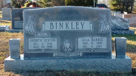 HARRIS BINKLEY, LULA CATHERINE - Cheatham County, Tennessee | LULA CATHERINE HARRIS BINKLEY - Tennessee Gravestone Photos