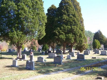 *FOREST HILL VIEW,  - Cheatham County, Tennessee |  *FOREST HILL VIEW - Tennessee Gravestone Photos