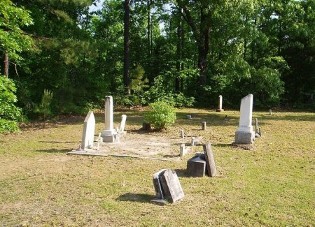 *ANTIOCH OVERVIEW,   - Chester County, Tennessee |   *ANTIOCH OVERVIEW - Tennessee Gravestone Photos