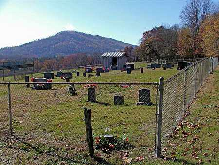 *CARDWELL OVERVIEW,  - Claiborne County, Tennessee |  *CARDWELL OVERVIEW - Tennessee Gravestone Photos