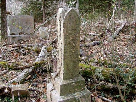 CARDWELL, WILLIAM L. GREEN - Claiborne County, Tennessee | WILLIAM L. GREEN CARDWELL - Tennessee Gravestone Photos