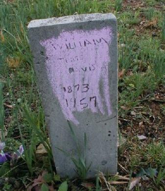 DAVIS, WILLIAM JESSE LEE - Clay County, Tennessee   WILLIAM JESSE LEE DAVIS - Tennessee Gravestone Photos