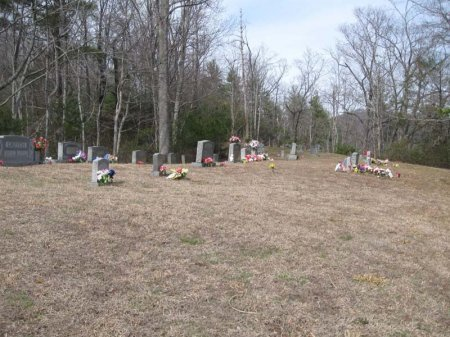 *CEMETERY VIEW,  - Cocke County, Tennessee |  *CEMETERY VIEW - Tennessee Gravestone Photos