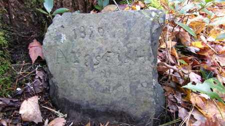 FISH, ALIES - Cocke County, Tennessee | ALIES FISH - Tennessee Gravestone Photos