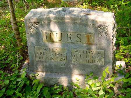 HURST, WILLIAM M. - Cocke County, Tennessee | WILLIAM M. HURST - Tennessee Gravestone Photos