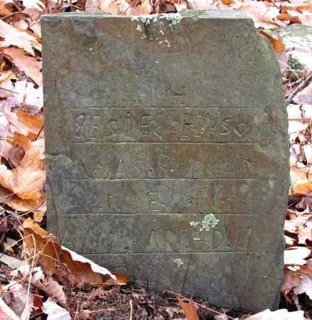 JOHNSON, JESSIE - Cocke County, Tennessee | JESSIE JOHNSON - Tennessee Gravestone Photos