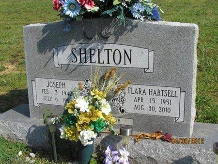 SHELTON, FLARA - Cocke County, Tennessee | FLARA SHELTON - Tennessee Gravestone Photos