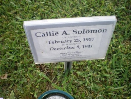 SOLOMON, CALLIE A. - Cocke County, Tennessee | CALLIE A. SOLOMON - Tennessee Gravestone Photos