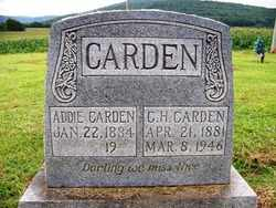 CARDEN, ADDIE - Coffee County, Tennessee | ADDIE CARDEN - Tennessee Gravestone Photos