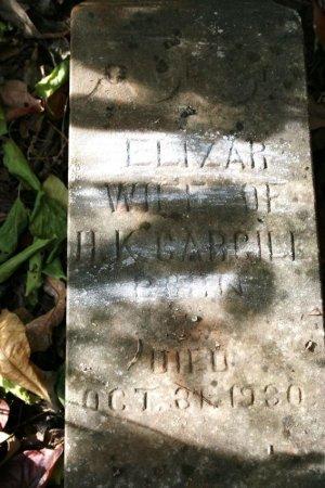 CARGILL, ELIZAR - Coffee County, Tennessee | ELIZAR CARGILL - Tennessee Gravestone Photos