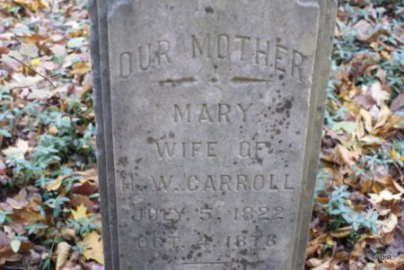 WALKER CARROLL, MARY BIRD - Coffee County, Tennessee | MARY BIRD WALKER CARROLL - Tennessee Gravestone Photos