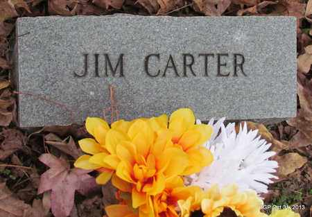 CARTER, JIM - Coffee County, Tennessee | JIM CARTER - Tennessee Gravestone Photos