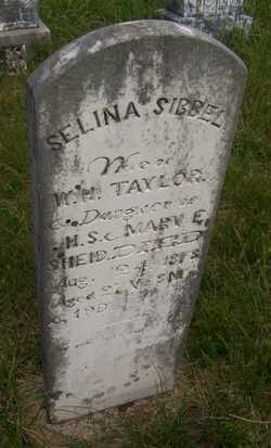 TAYLOR, SELINA SIBBEL - Coffee County, Tennessee | SELINA SIBBEL TAYLOR - Tennessee Gravestone Photos