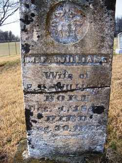 WILLIAMS, M. F. - Coffee County, Tennessee | M. F. WILLIAMS - Tennessee Gravestone Photos