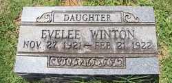 WINTON, EVELEE - Coffee County, Tennessee | EVELEE WINTON - Tennessee Gravestone Photos