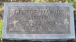 WINTON, GEORGE MARVIN - Coffee County, Tennessee | GEORGE MARVIN WINTON - Tennessee Gravestone Photos