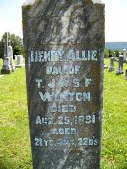 WINTON, HENRY ALLIE - Coffee County, Tennessee | HENRY ALLIE WINTON - Tennessee Gravestone Photos