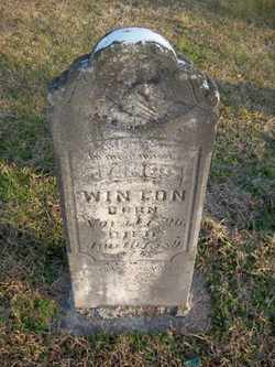 WINTON, JAMES - Coffee County, Tennessee | JAMES WINTON - Tennessee Gravestone Photos
