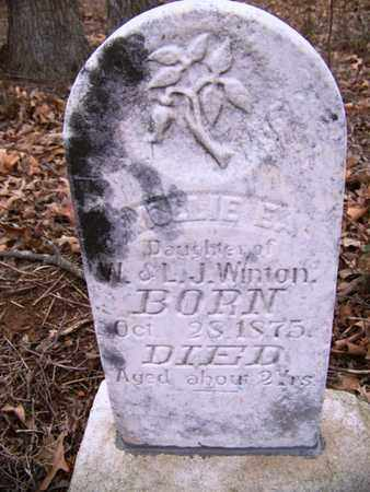 WINTON, MARY ELIZABETH - Coffee County, Tennessee | MARY ELIZABETH WINTON - Tennessee Gravestone Photos
