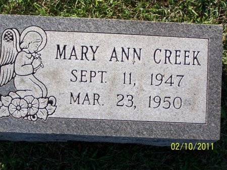 CREEK, MARY ANN - Davidson County, Tennessee | MARY ANN CREEK - Tennessee Gravestone Photos