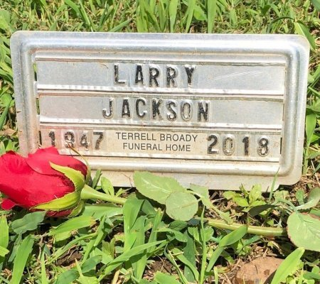 JACKSON, LARRY - Davidson County, Tennessee | LARRY JACKSON - Tennessee Gravestone Photos
