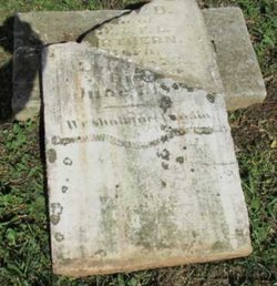 NORTHERN, DAISY - Davidson County, Tennessee | DAISY NORTHERN - Tennessee Gravestone Photos